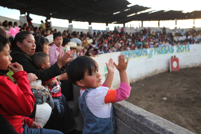 Photo 11: Clapping for the killing of the bull