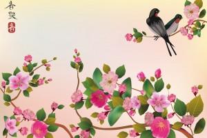 sakura ,bird , spring , postcard .